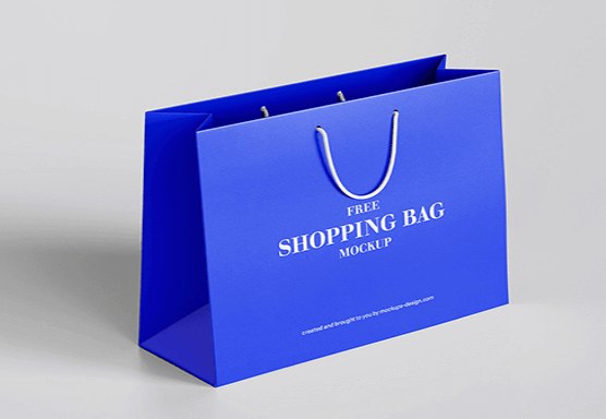 Large Paper Bags (A3 sized)